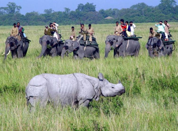 Фото: vxplor.com